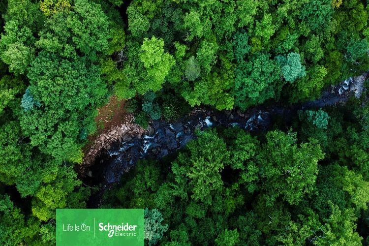Schneider Electric Global Biyoçeşitlilik Kaybıyla Mücadele Taahhüdünün Ayrıntılarını Açıkladı